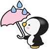 pearl_rainyday.jpg100