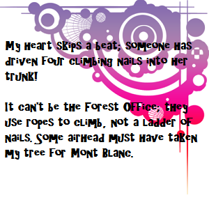 ts-quote1