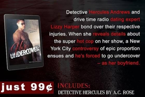 Hero Undercover - ACR